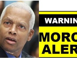 Dem Congressman Hank Johnson compares Jews to termites...sorta goes along with the anti-Semitism aga