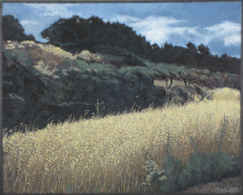 AUJARGUES FIELD 2015, oil on canvas 13×16 in / 33×41 cm
