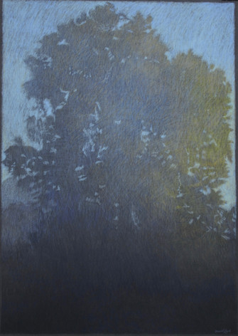 MORNING MIST 2019, pastel 28×20 in / 70×50 cm