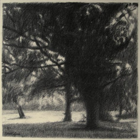 SUMMER EVENING 2015, charcoal 16×16 in / 40×40 cm