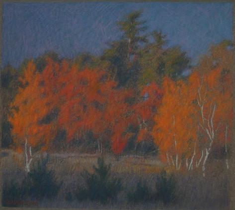 LAST LIGHT 2011, pastel 7×8 in / 18×20 cm