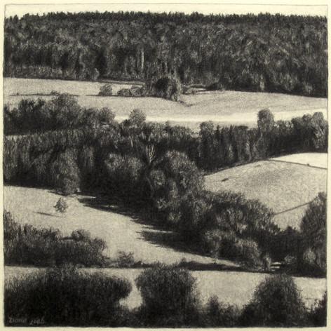 JURA FIELDS 2015, charcoal 16×16 in / 40×40 cm