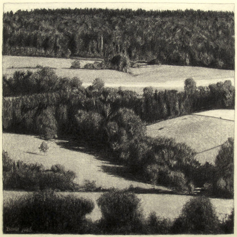 JURA FIELDS 2015, charcoal 16×16 in / 40×40 cm