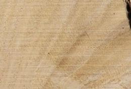 Holzbodenkonstruktionen