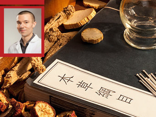 Introductory Seminar, Five Elements Theory in Traditional Chinese Medicine