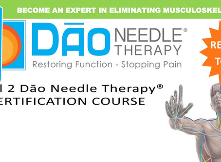 Dao Needle Therapy Level 2 Course