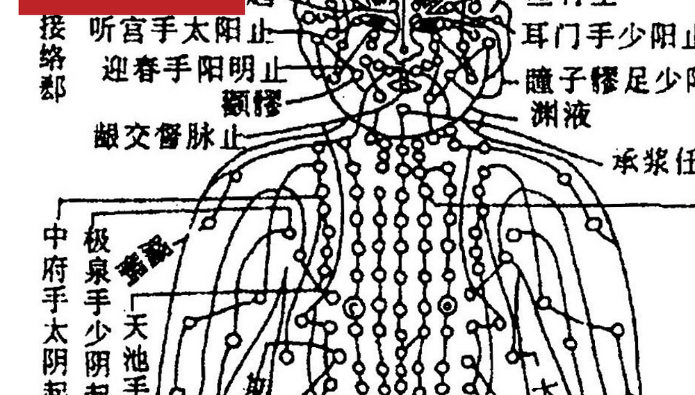 Learn about the meridians in traditional Chinese medicine