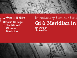 Introductory Seminar, Qi & Meridian in Traditional Chinese Medicine