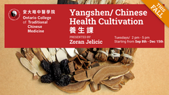 Yangshen/Chinese Health Cultivation