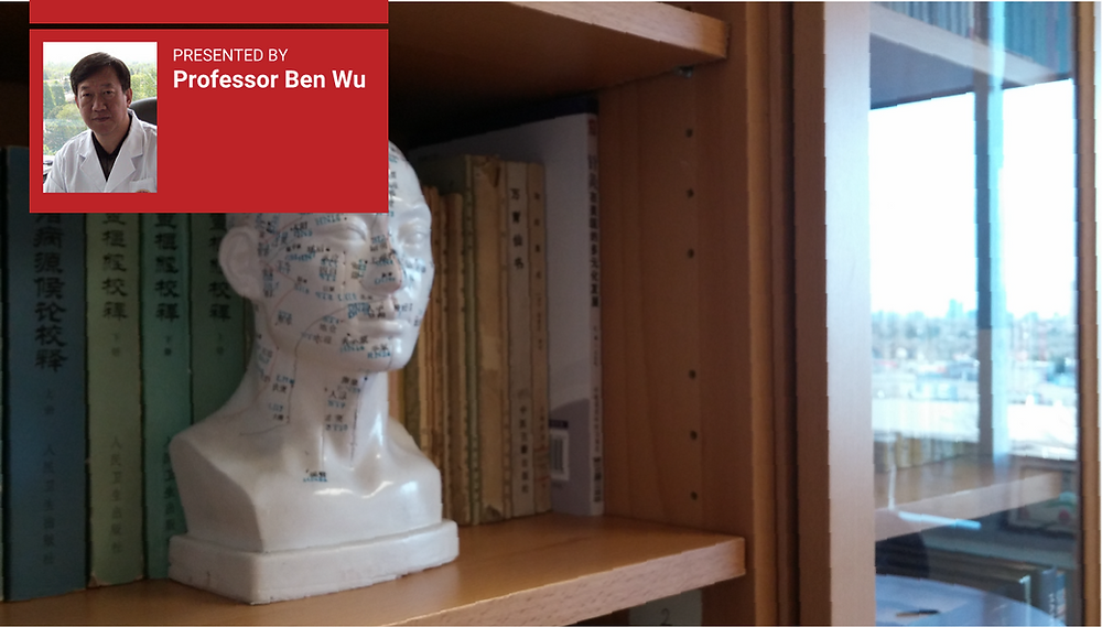 Close-up of a bookshelf with a porcelain bust with acupuncture points