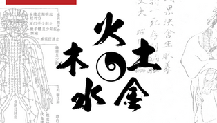 Foundation of Traditional Chinese Medicine I
