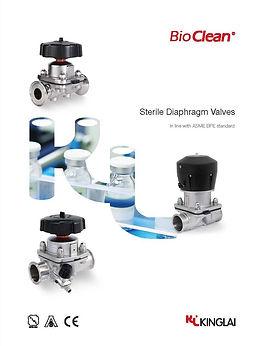D valve 01-06-2018 1.jpg