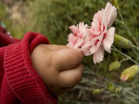 Growth as a Moral Framework