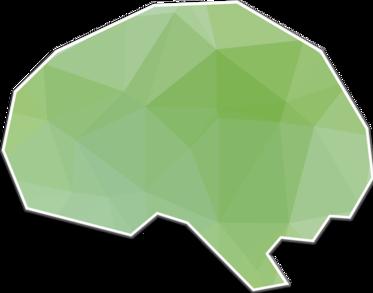 Building a Second Brain: Case Study