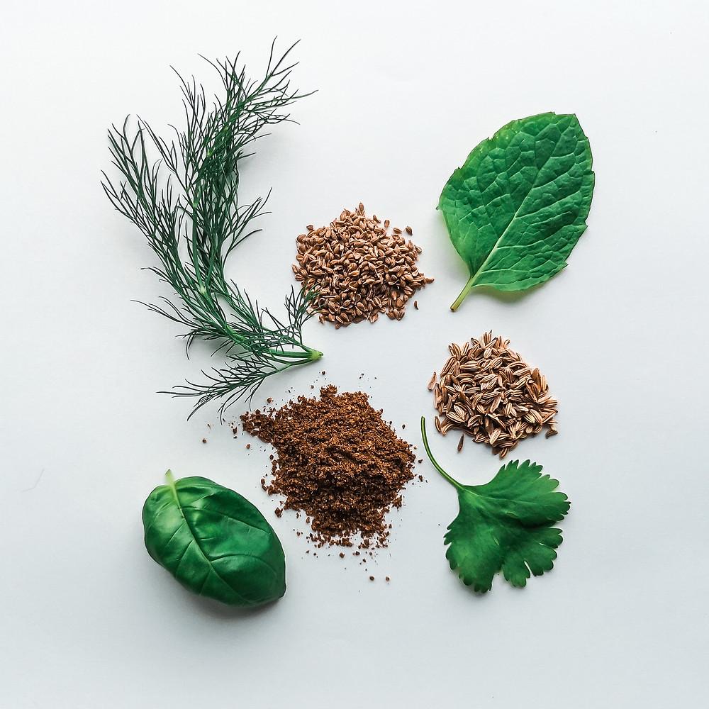 bylinky a korenie - prvá pomoc pri nafúknutom bruchu