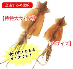 tokutoku-3