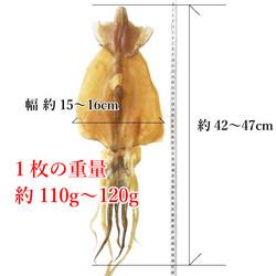tokutoku-2-2