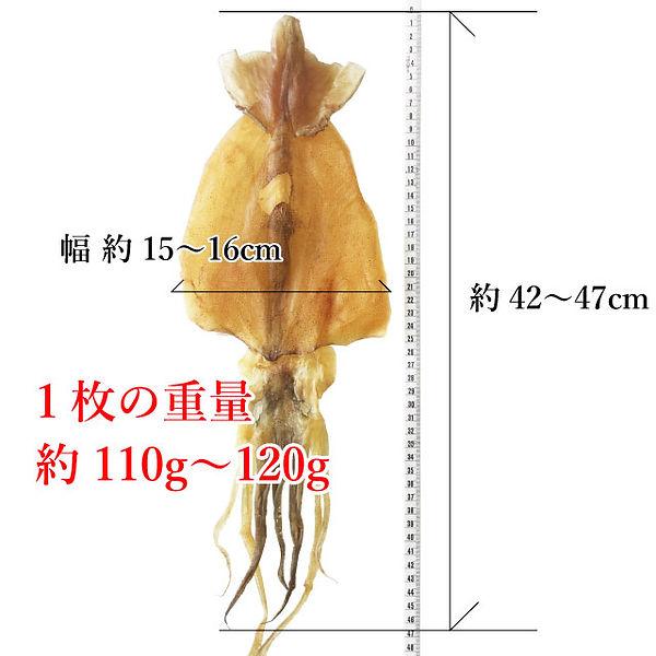 tokutoku-2-2.jpg