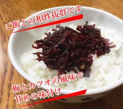 umekikurage-3