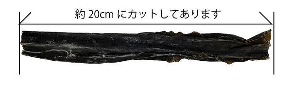 dashikon-2-2.jpg