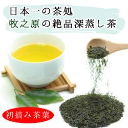 牧之原産 初摘み 深蒸し茶 100g 640×640