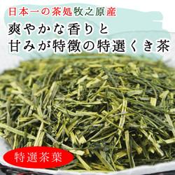 牧之原産 特選 くき茶(棒茶) 200g