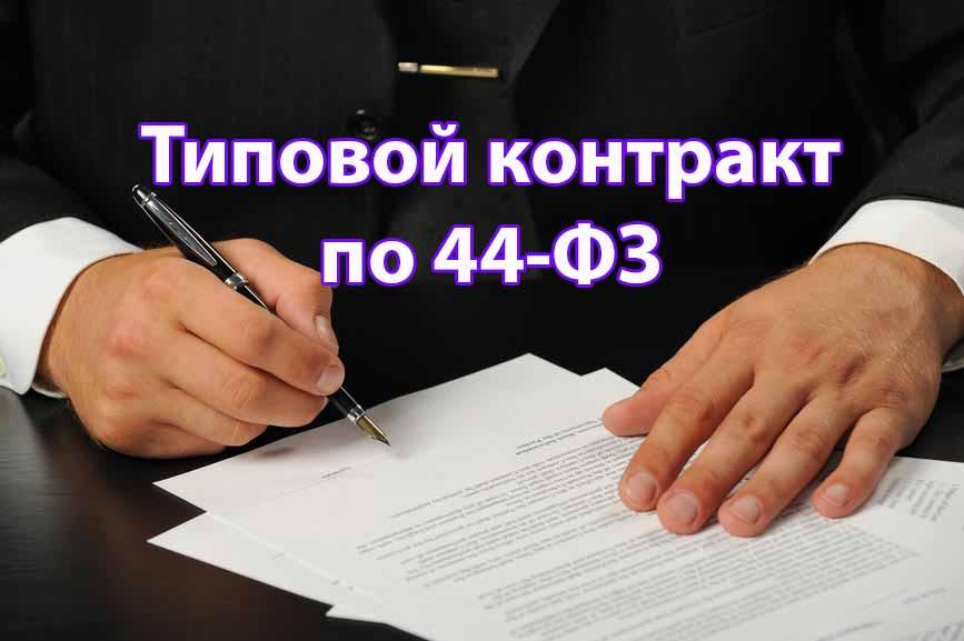 новые картинка типовой контракт конечно, интересует