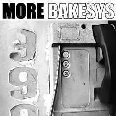 More Bakesys