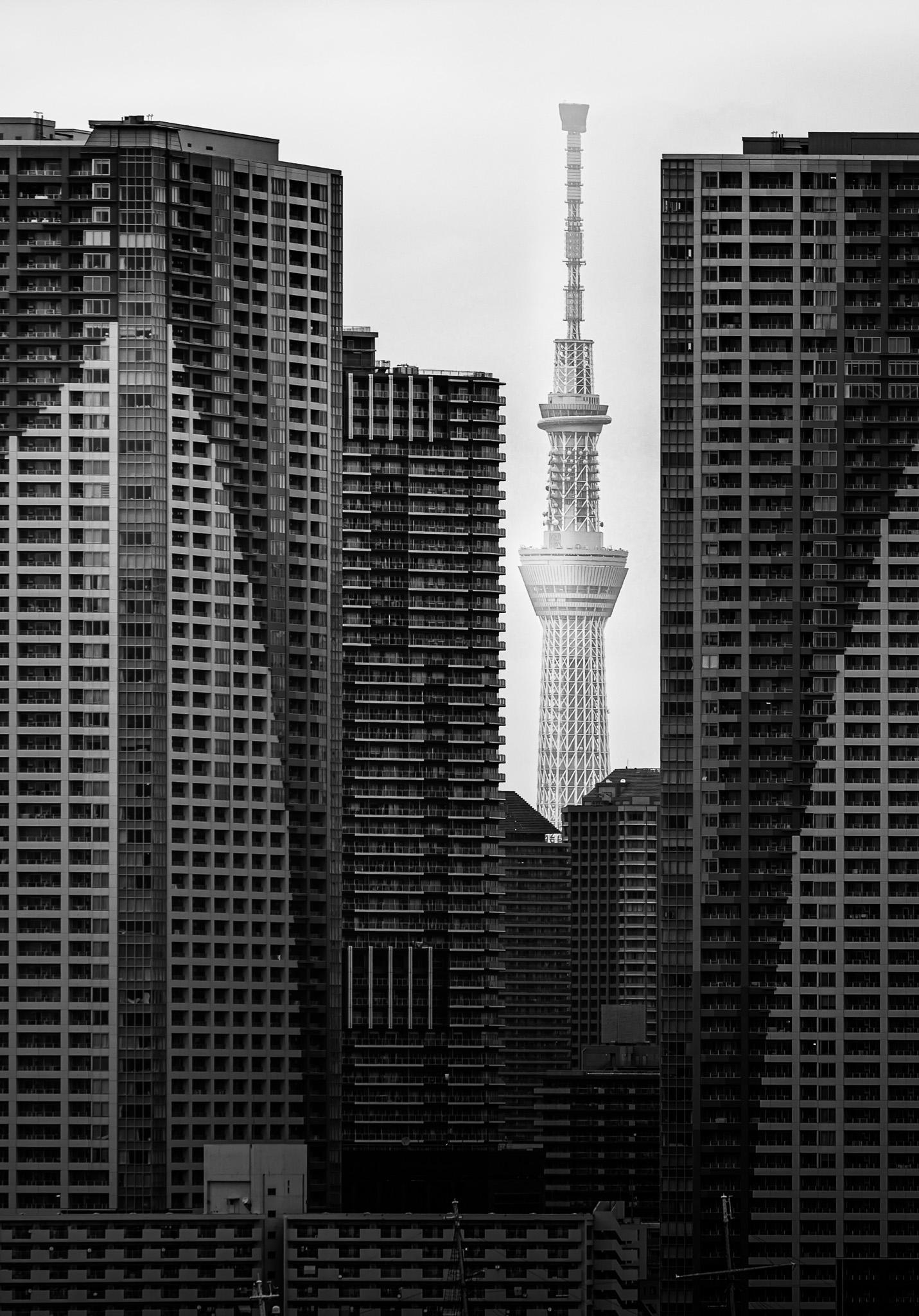 Japan Cityscape 2019