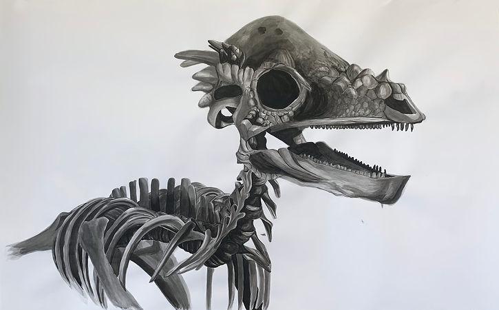 pachysepholosaurus.jpg