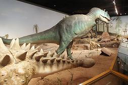 natural-history-museum14.jpg