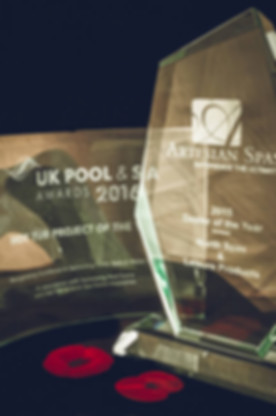 North Spas Hot Tub Project of the Year Award