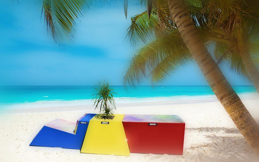 triptyque sur plage palmier.jpg