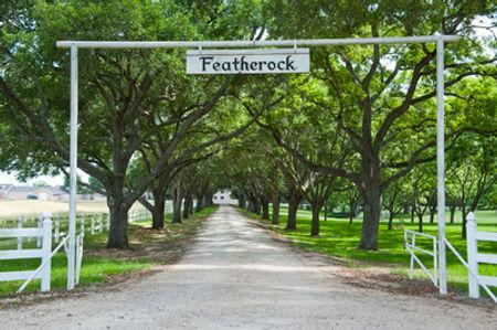 featherock-entrance_medium.jpg