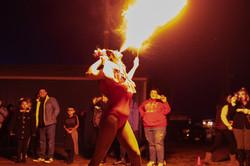 New Haven Taco Festival 2019