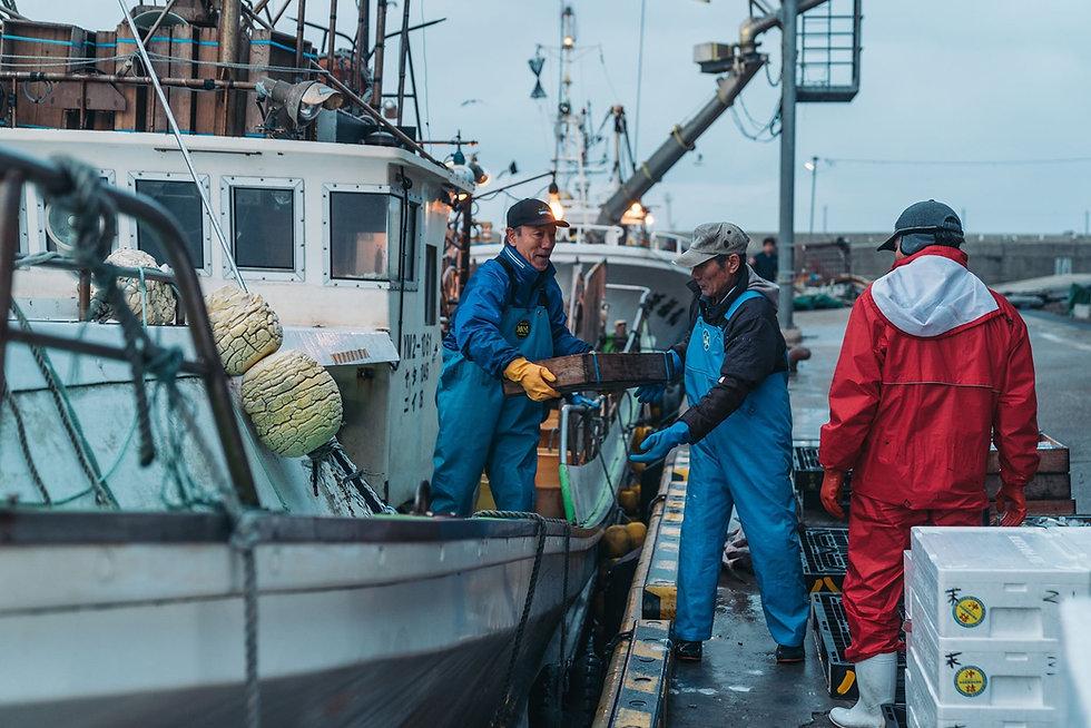 鼠ヶ関漁港で捕れた魚の水揚げ