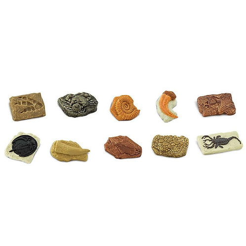 Safari Ltd Toob Fossilien