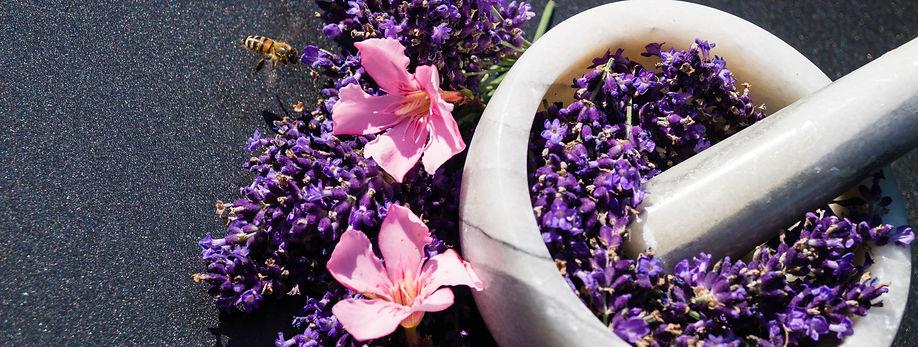 purple_flower_on_white_round_ceramic_pot-scopio-6c4ec062-3c51-4eea-a463-fd20645e06c3_edite