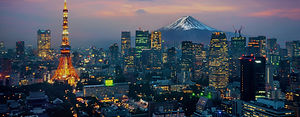 Aerial view of Tokyo cityscape with Fuji