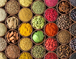 SPICES copy.png