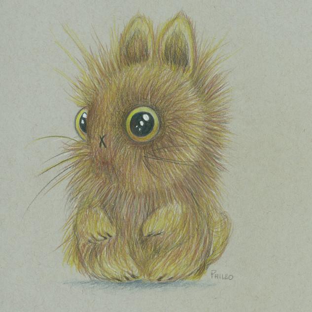Baby-Bunny.jpg