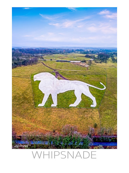 WHIPSNADE LION