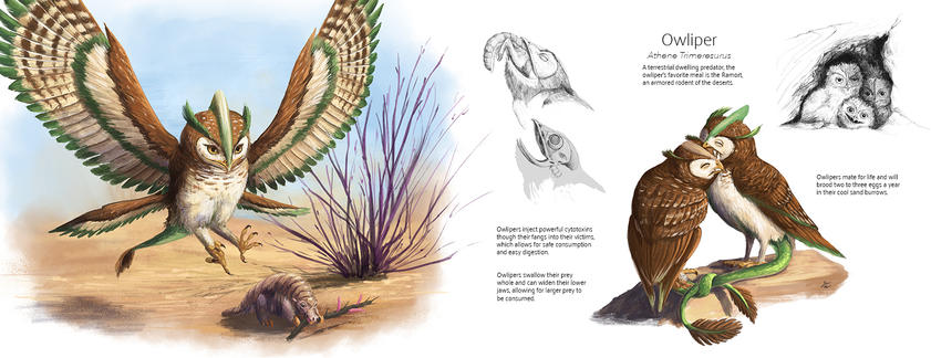 Owliper