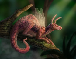 Fairy Dragon IV