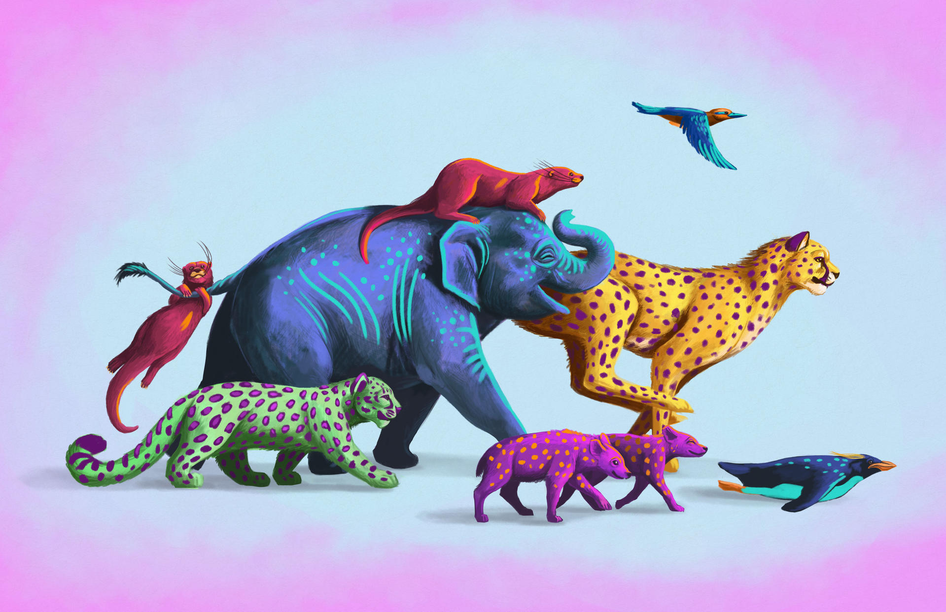Run for the Zoo Artwork