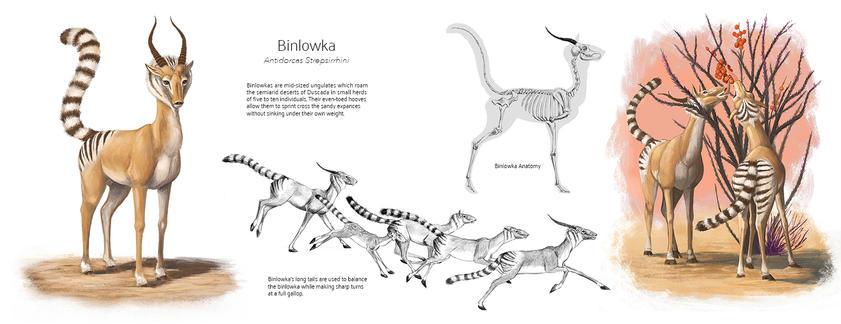 Binlowka