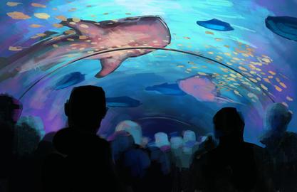 Aquarium Study 1