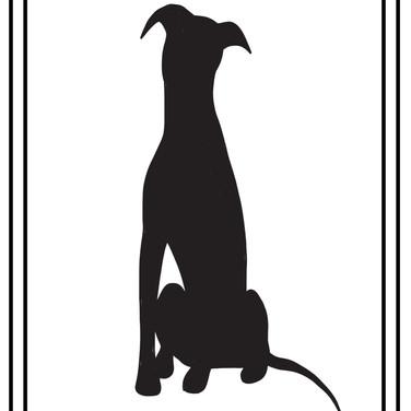 greyhound sitting solid jpg.jpg