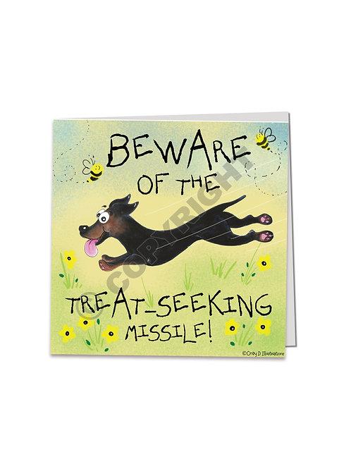 Bella - The treat seeking missile :  square card