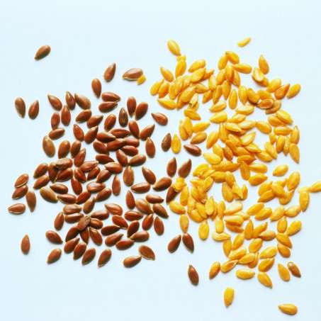 flaxseeds - why they can be beneficial for your gut health